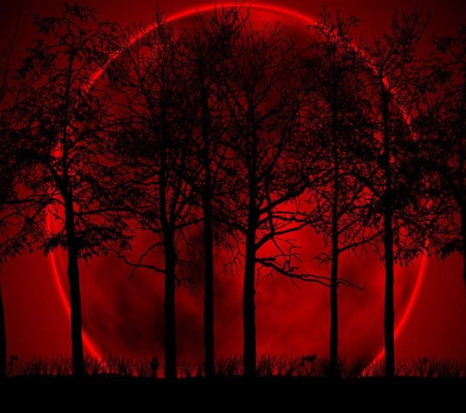 blood moon trees